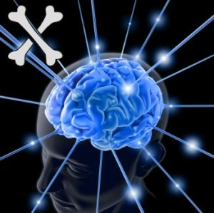 Brain logo season 10