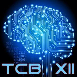 TCB S12 logo